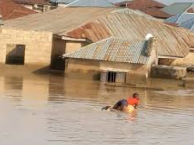 WORLD FOOD DAY: Sokoto Sets up Committee to help Farmers Affect by Flood
